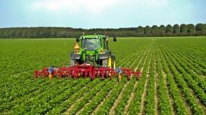 agricoltura-2-300x168