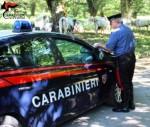 Vittoria (RG) Carabinieri pascolo abusivo 1
