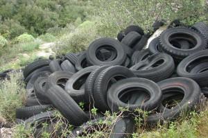 12a - Discarica abusiva di copertoni nei pressi di Cava Martorina